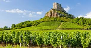 Visit French Wine