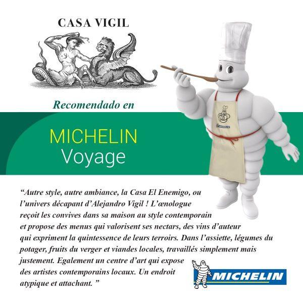 Guìa-Michelin-en-francès-600x600