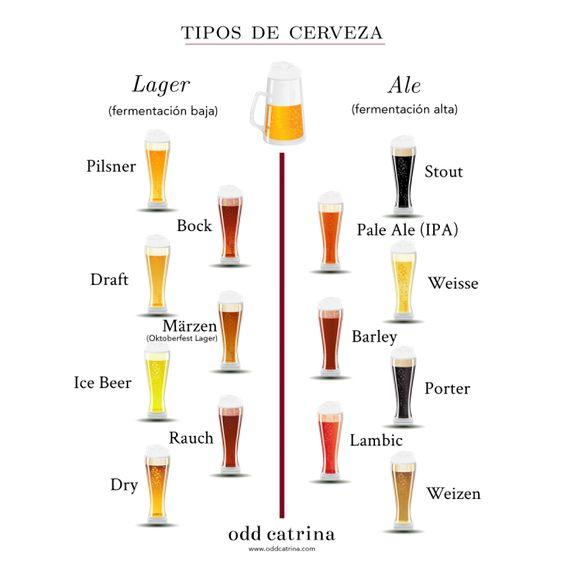Tipos cerveza
