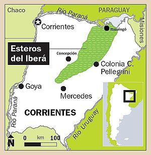 300px-Esteros_del_Ibera