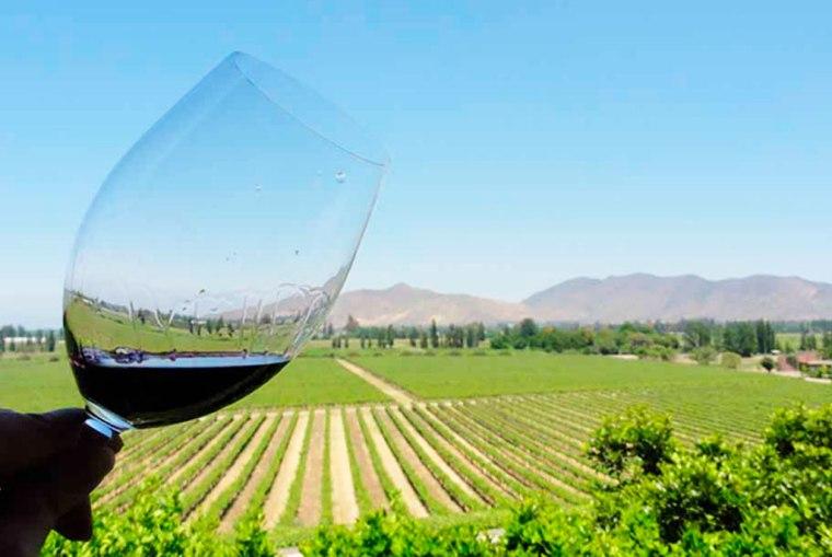 descubriendo-vinos-argentinos-2
